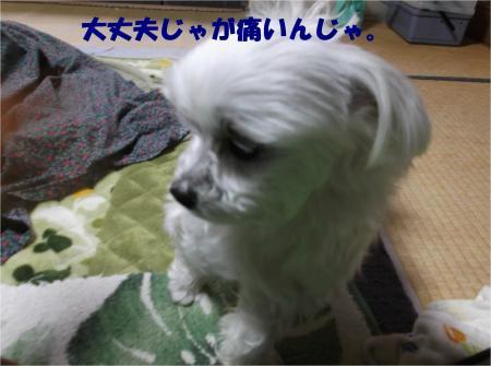 05_convert_20140130182933.jpg
