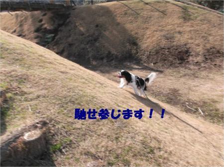 05_convert_20140203171604.jpg