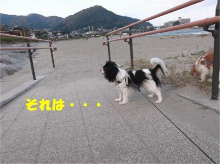 06_convert_20121029173610.jpg