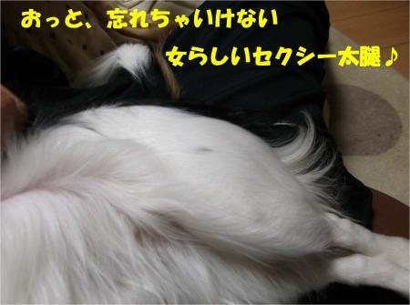 06_convert_20121205162952.jpg
