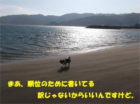 06_convert_20140106162208.jpg