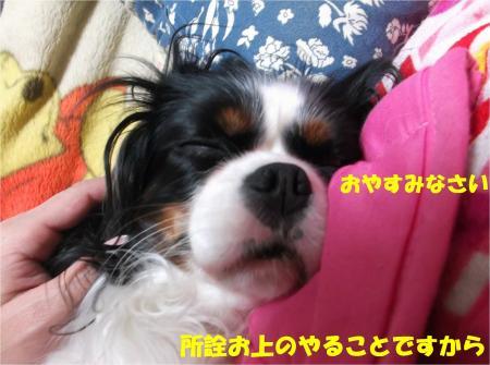 06_convert_20140109174313.jpg