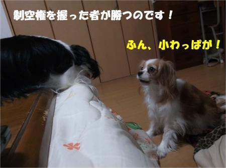 06_convert_20140114182907.jpg