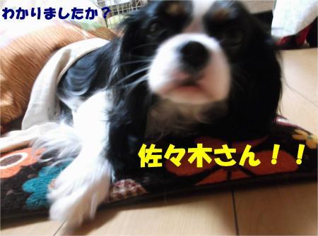 06_convert_20140115193952.jpg