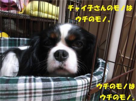 06_convert_20140121185541.jpg