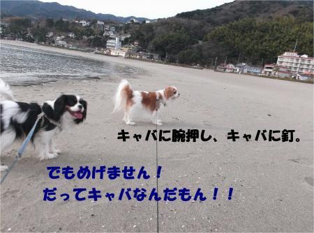 06_convert_20140125144008.jpg