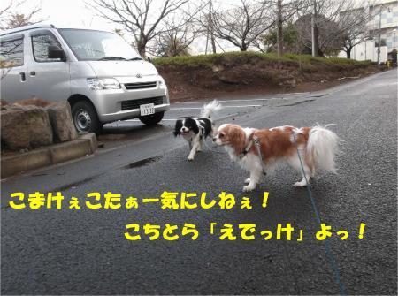 06_convert_20140127181703.jpg