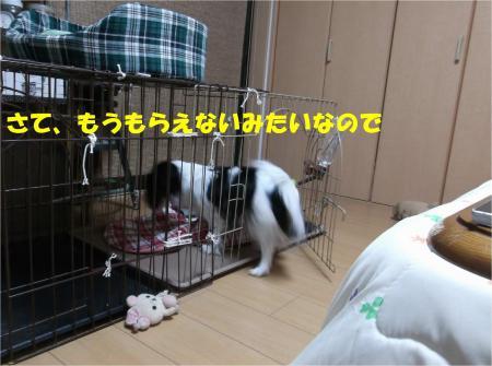 06_convert_20140131183037.jpg