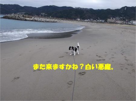 06_convert_20140210183402.jpg