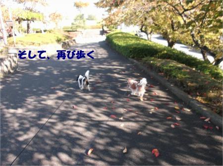 07_convert_20121112172746.jpg