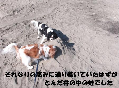 07_convert_20121113172030.jpg