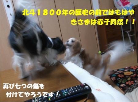07_convert_20140114182916.jpg