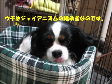 07_convert_20140121185550.jpg