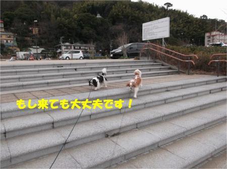 07_convert_20140210183416.jpg