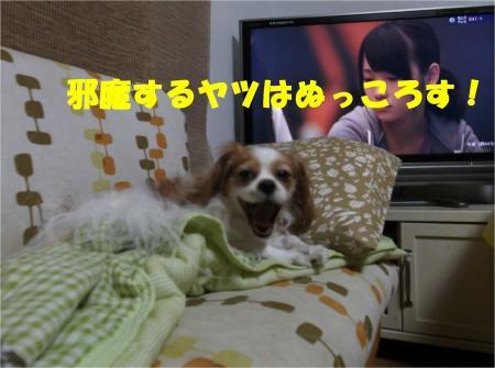 08_convert_20121026174521.jpg