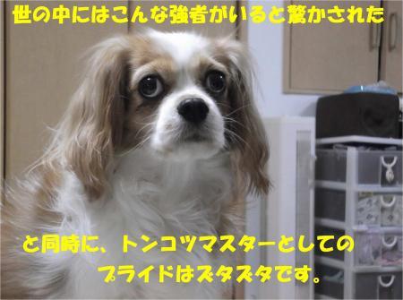 08_convert_20121113172046.jpg