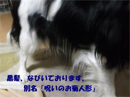 08_convert_20121205163019.jpg