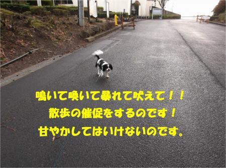 08_convert_20140130183007.jpg