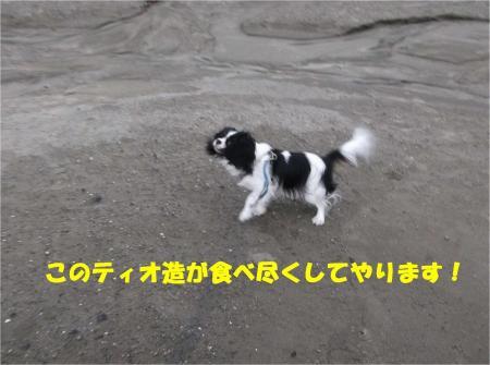 08_convert_20140210183427.jpg