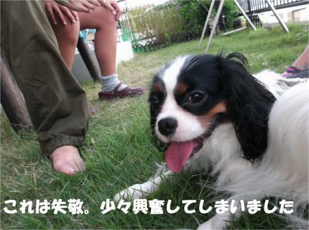 09_convert_20121009182600.jpg