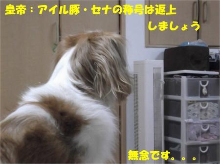 09_convert_20121113172100.jpg
