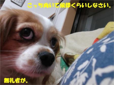 09_convert_20140109174343.jpg