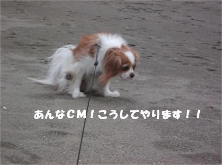 09_convert_20140211115638.jpg