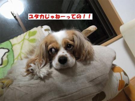 05_convert_20120412185218[1]