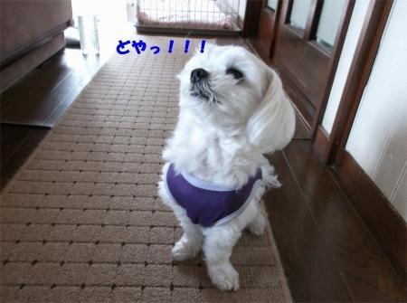 09_convert_20120413174024[1]