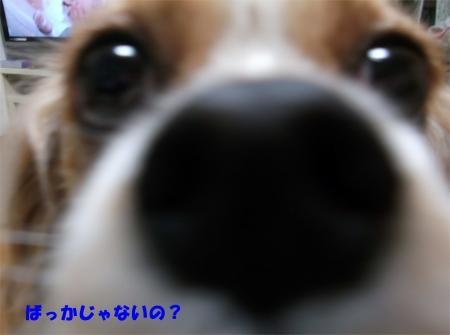 07_convert_20120417181156[1]