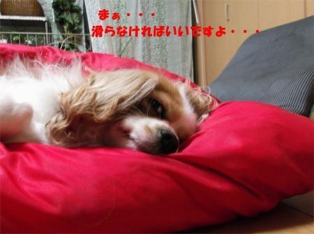 07_convert_20120420191256[1]