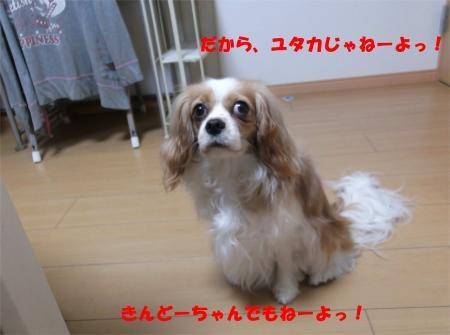 02_convert_20120424182200[1]