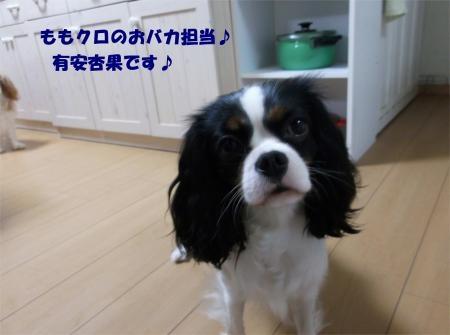 04_convert_20120424182258[1]
