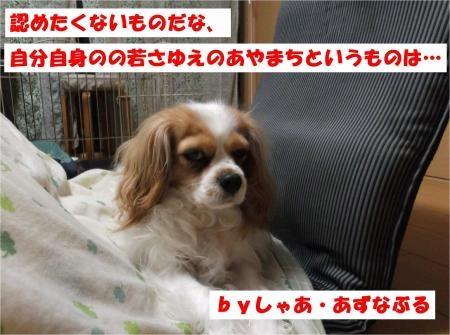 05_convert_20120502170248[1]