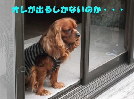 06_convert_20120508173536[1]