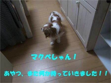 01_convert_20120515181030[1]