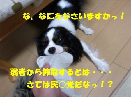 03_convert_20120515181141[1]