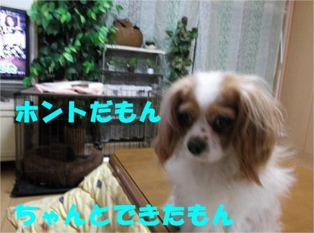 07_convert_20120515181353[1]