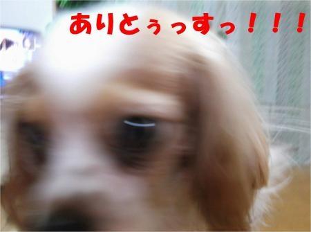 09_convert_20120515181450[1]