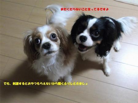 01_convert_20120517184440[1]