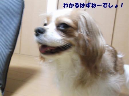 07_convert_20120517184747[1]