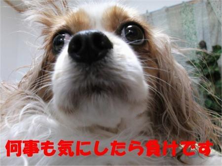 09_convert_20120518180233[1]