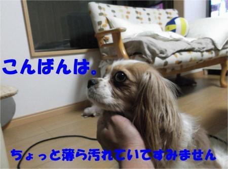 01_convert_20120522175123[1]