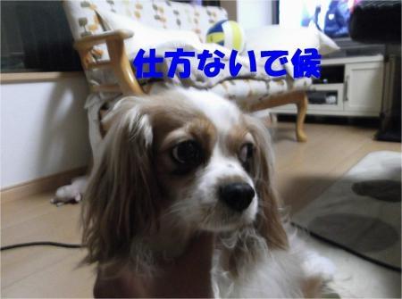 02_convert_20120522175156[1]