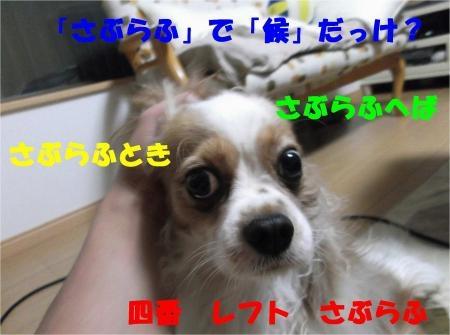 03_convert_20120522175227[1]