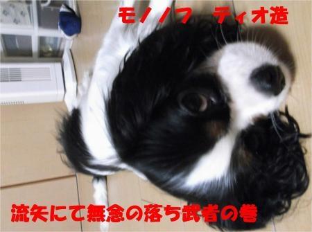 06_convert_20120522175405[1]
