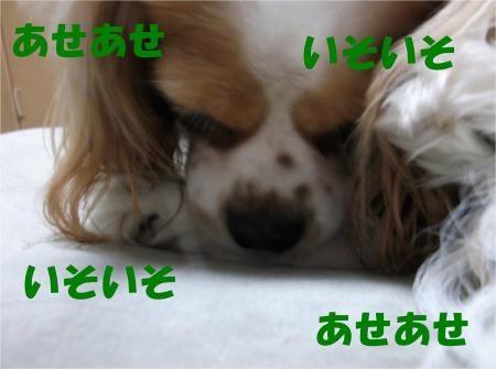 07_convert_20120523164358[1]
