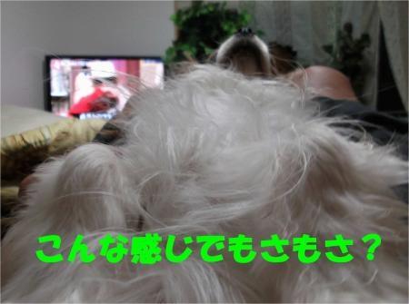 03_convert_20120524181233[1]