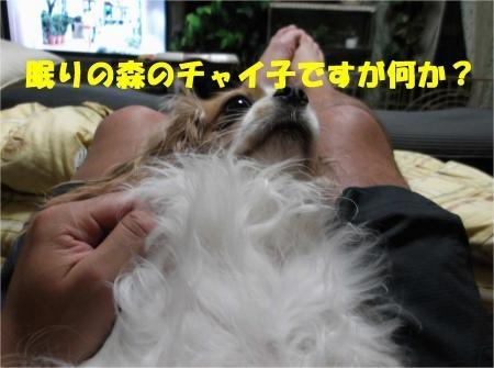 04_convert_20120524181305[1]