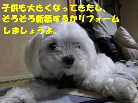 03_convert_20120525182412[1]